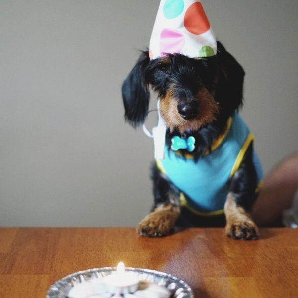 What? No birthdays?