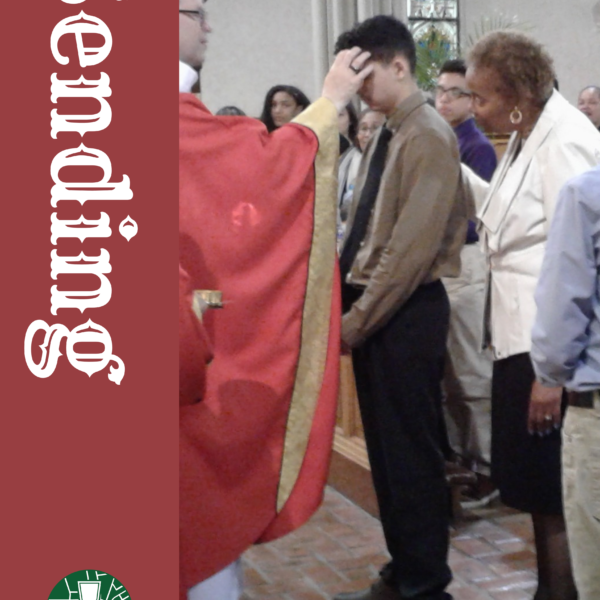 Building with Living Stones as Missionary Disciples – Send